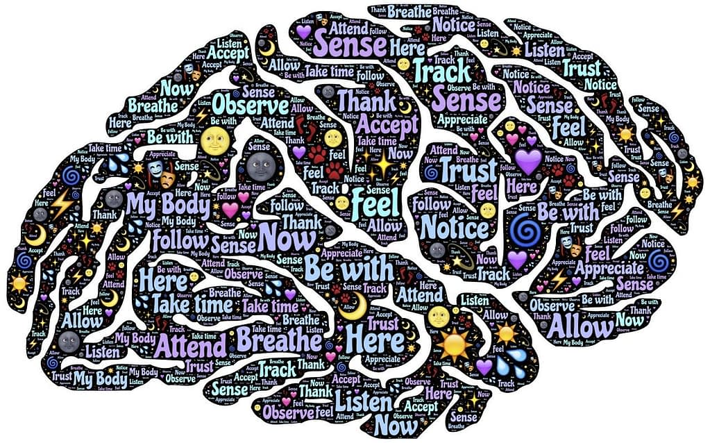 Brain food for your best life 60 plus